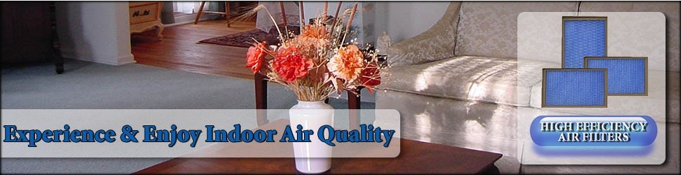 Indoor Air Quality service in Spring TX